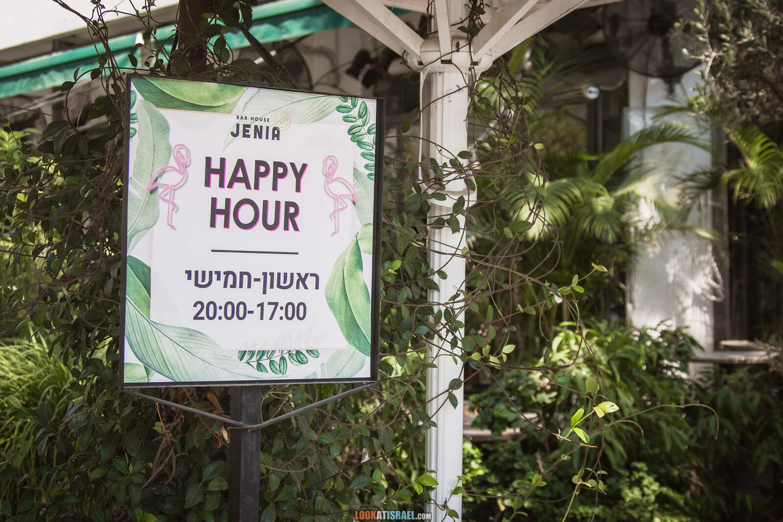 Тель-Авив, улица Дизенгофф во время карантина   Lockdown on beaches of Tel Aviv   LookAtIsrael.com - Фото путешествия по Израилю