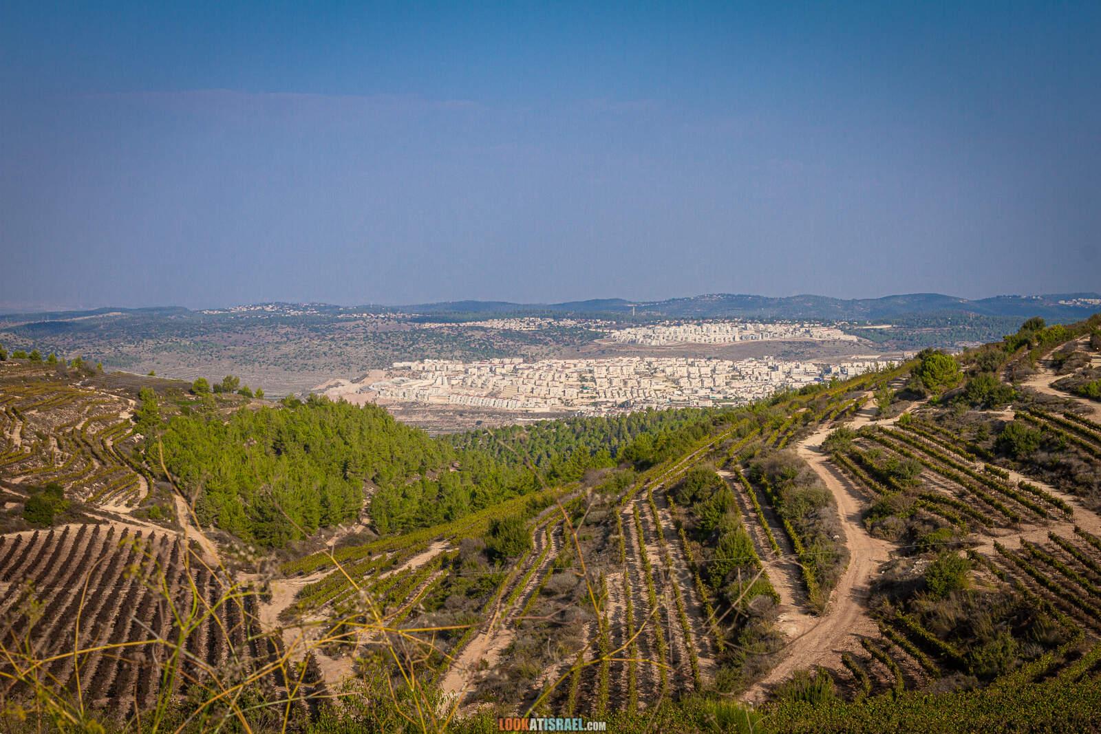 Бейтар Илит, Поход по родникам в Гуш Эцион | LookAtIsrael.com - Фото путешествия по Израилю