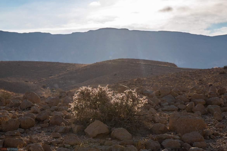 Все тропы горы Карком