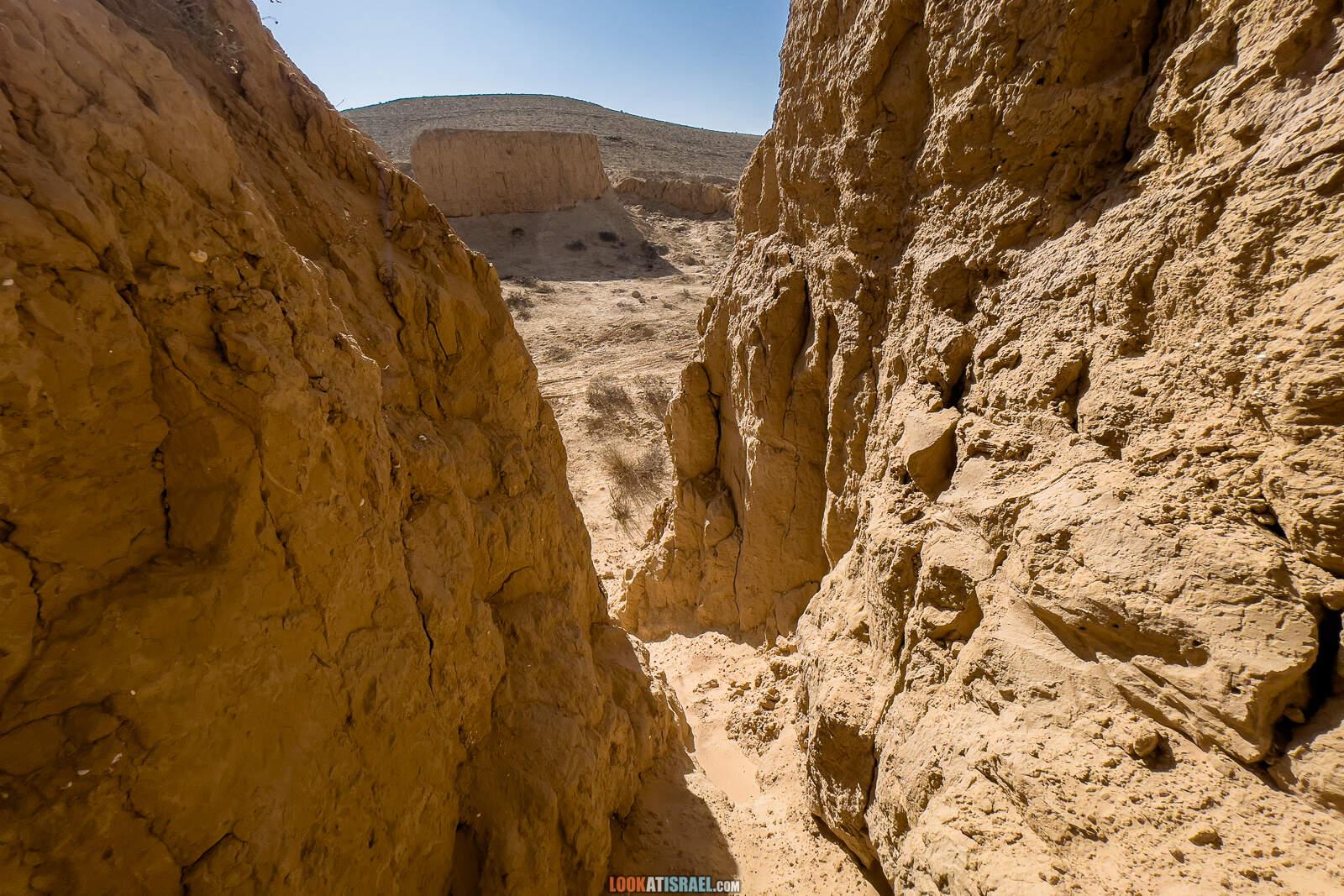 Большая дюна в нахаль лаван, каньон а-лес (лёсс) и пески Халуца, Агур | דיונה גדולה קניון הלס חולות חלוצה שונרה עגור