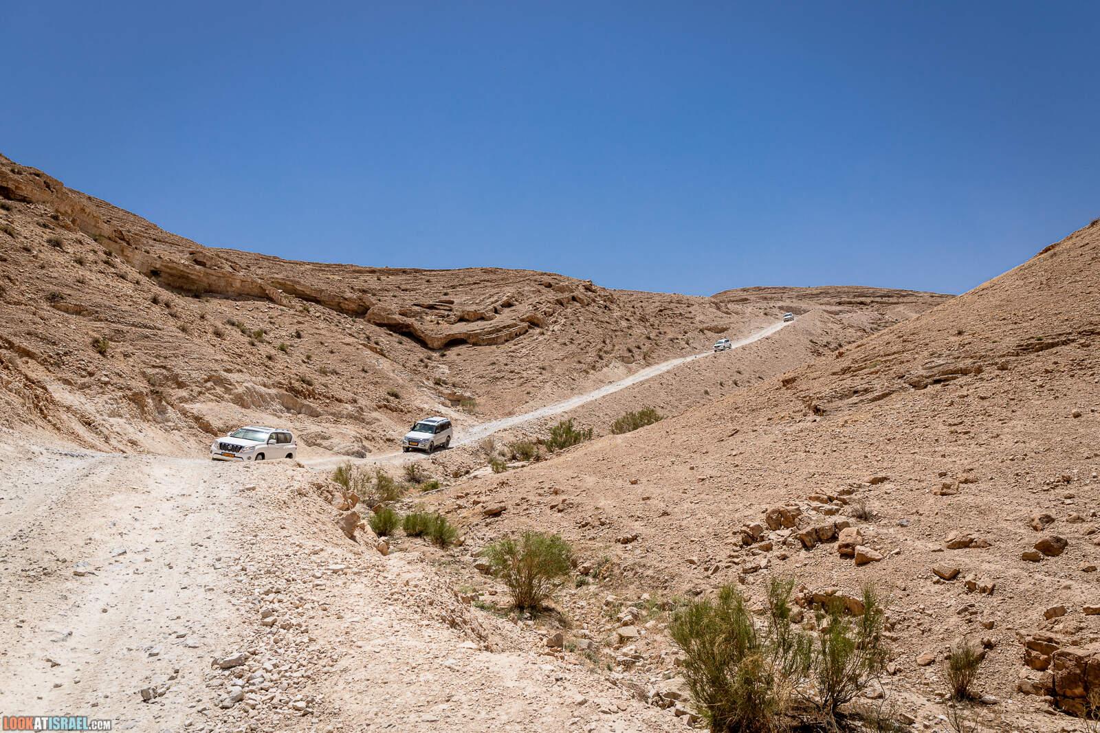 Иудейская пустыня  | LookAtIsrael.com - Фото путешествия по Израилю