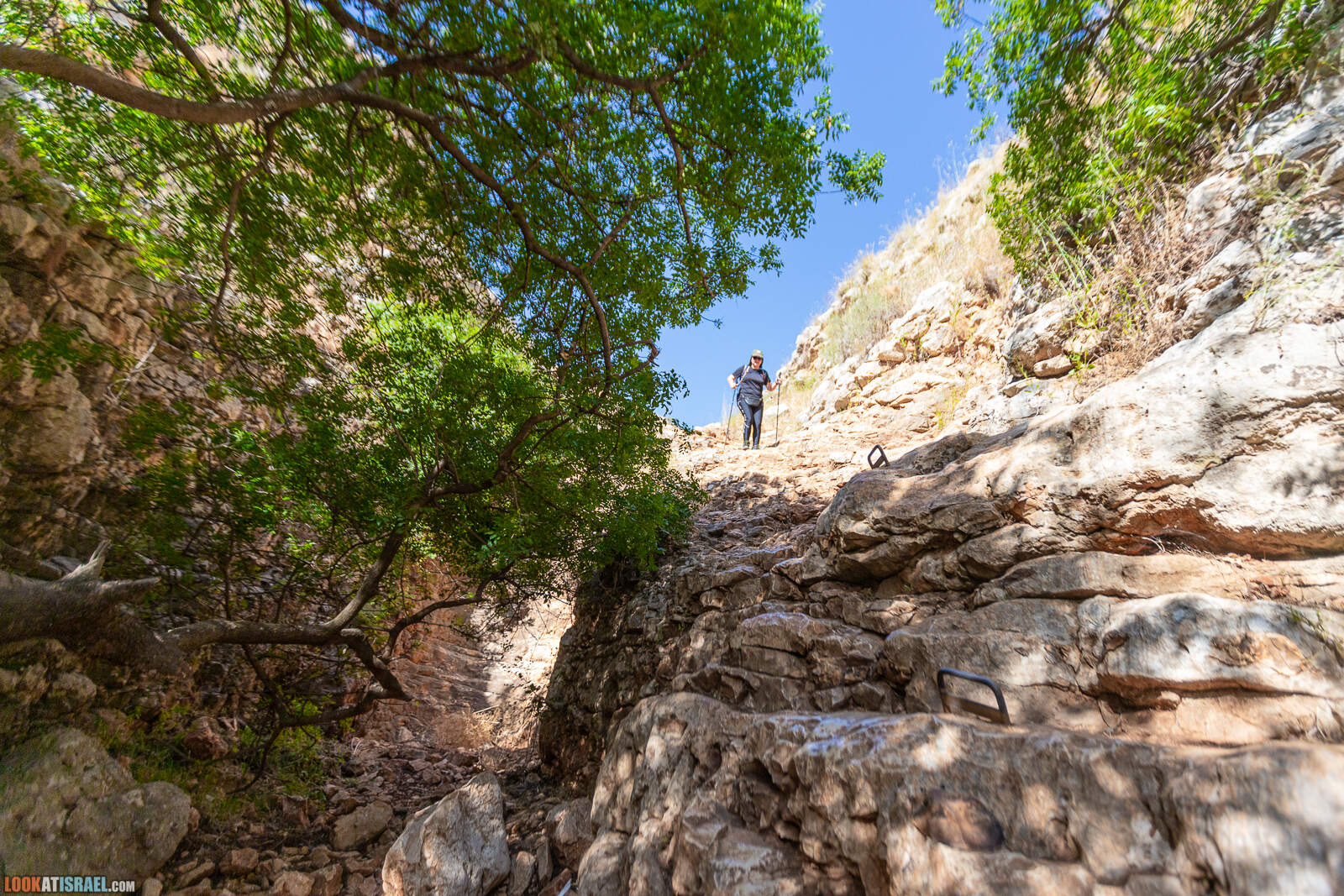 Ущелье Нахаль Ицпор - נחל יצפור