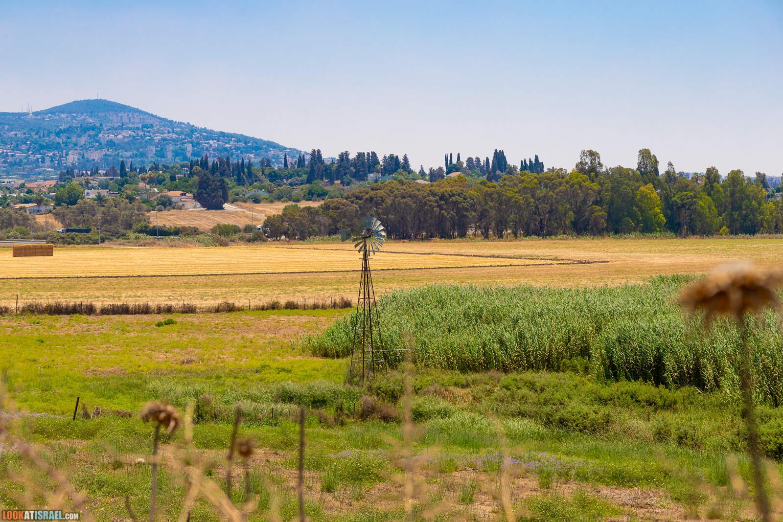 Путешествие 4x4 по Галилее и Голанским высотам | LookAtIsrael.com - Фото путешествия по Израилю