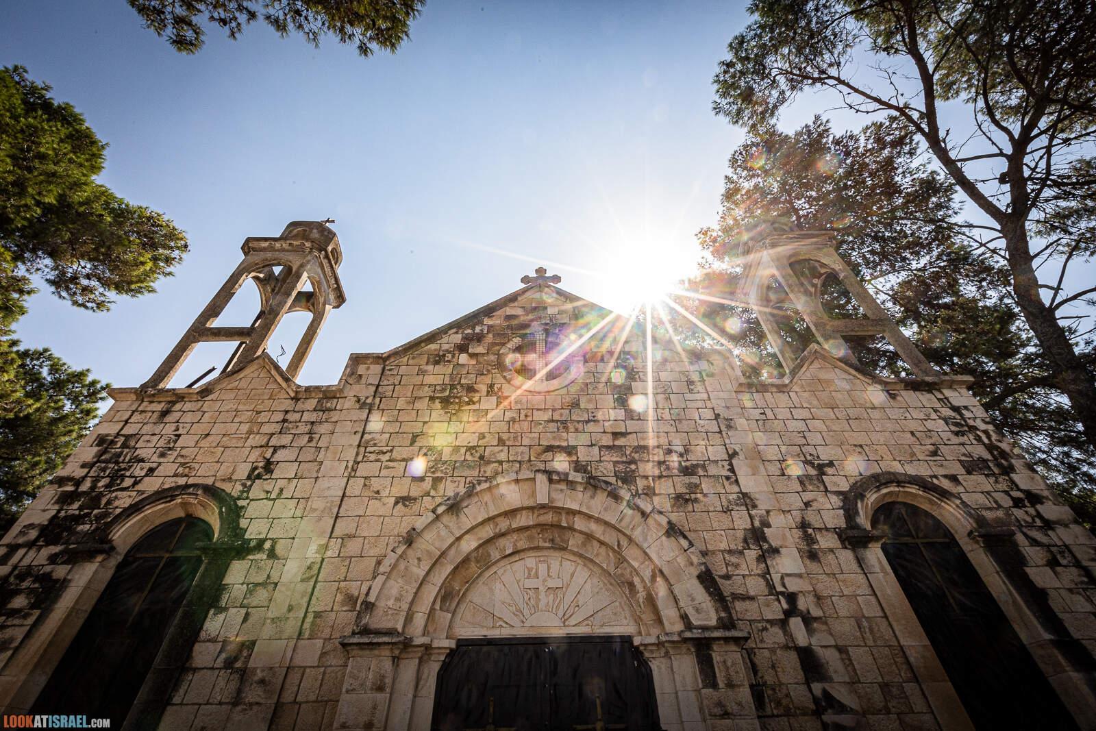 Путешествие по Галилее - Вкусный хумус, древние оливы, пивоварня Галиль, гора Хазон, источники ручья Мирон, лошадиная ферма, долина Нетуфа