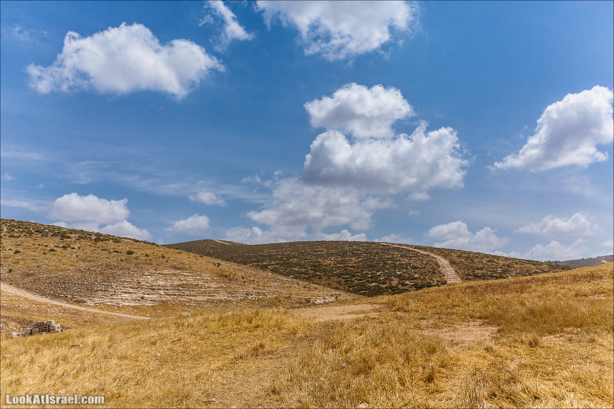 Курс вождения по бездорожью | Навигация и ориентирование на местности | LookAtIsrael.com - Фото путешествия по Израилю