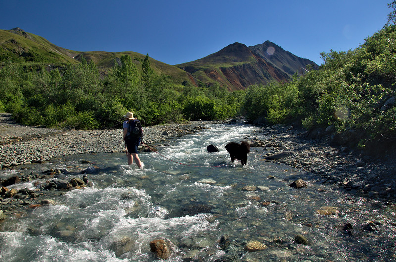kate and moose crossing the stream