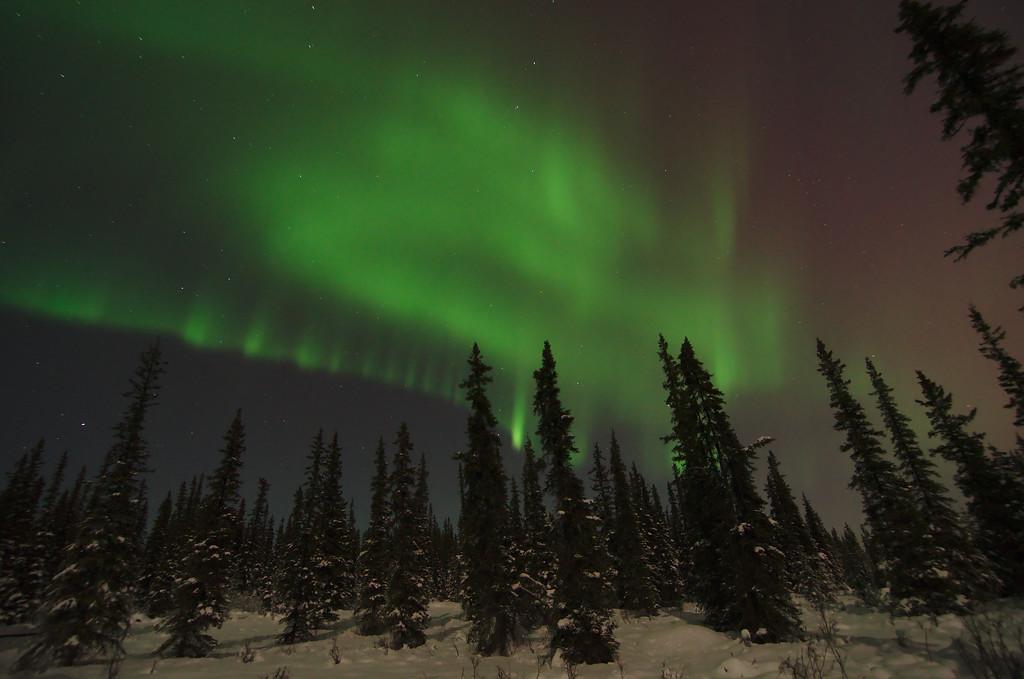 Great aurora borealis display over Fairbanks Alaska from February 2014.