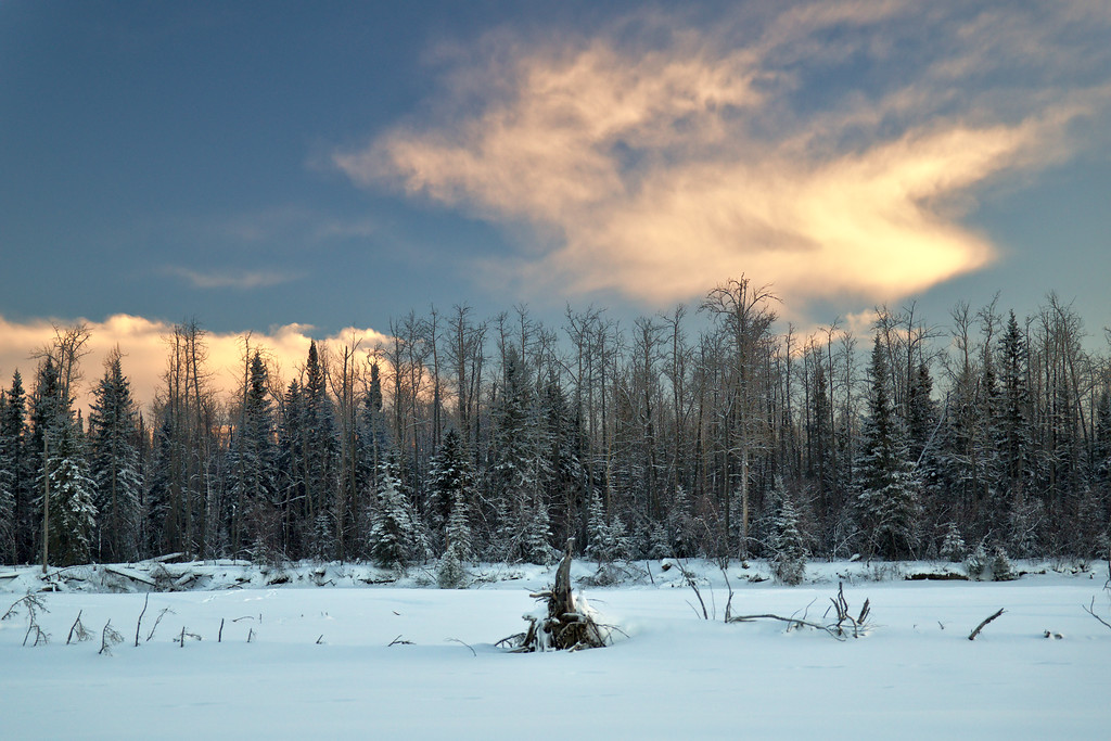 I went for a little ski last night on the Tanana River around sunset. We didn't get the wonderful colors that we've been getting frequently, but it was really pleasant anyway. Lots of cool clouds to the south and west and great temperatures . . . above zero!
