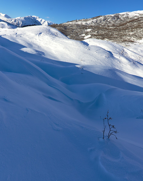 Wind blown snow dunes on the moraine. Wandering around on the Castner Glacier in winter.