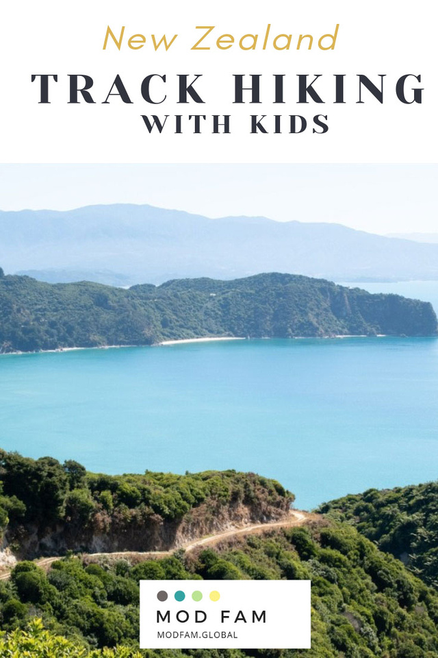 New Zealand Track Hiking with Kids: A view from the top of the first ridge of the Abel Tasman Coast Track, looking back toward the park's trail along rolling hills and native bush. The trail carves out a deep section of the hillside as it wraps around the top of the hill.
