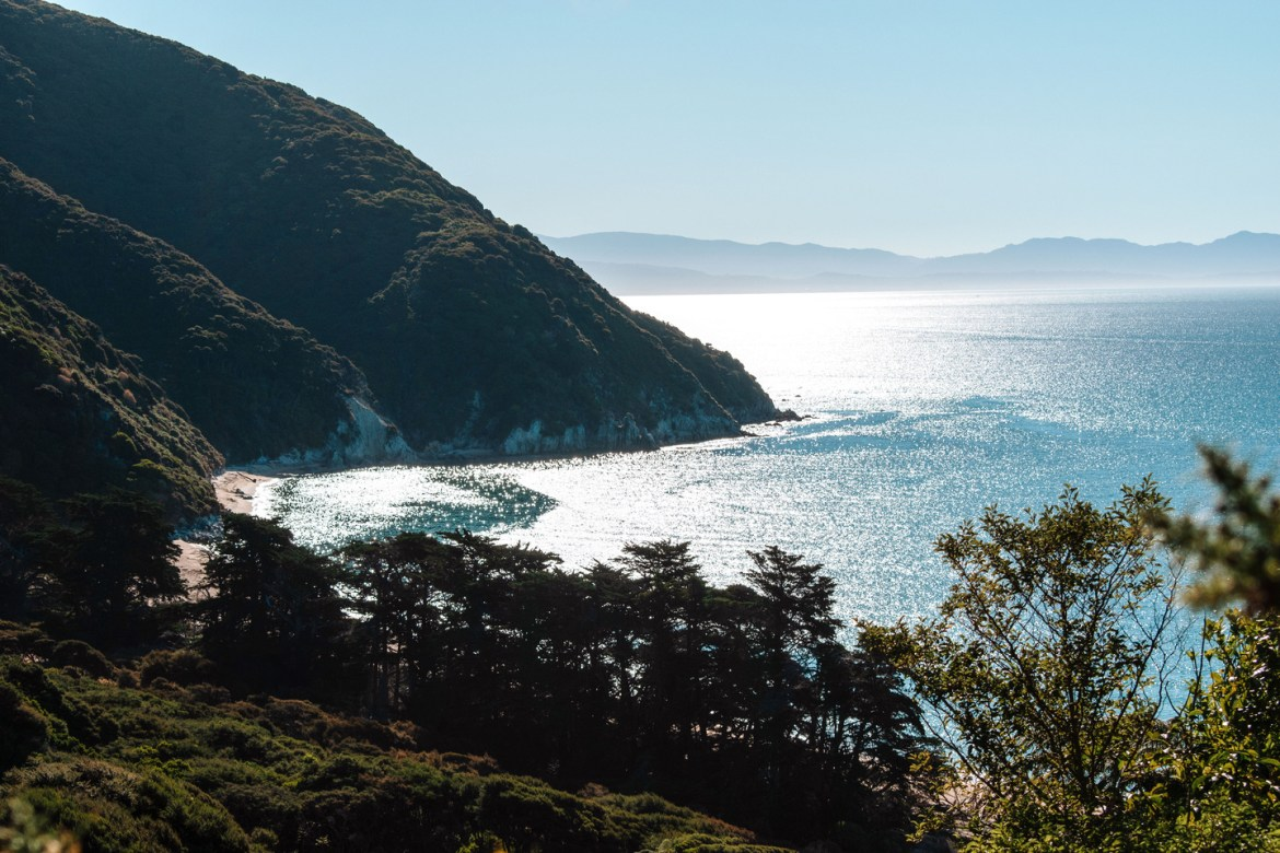 Abel Tasman Coast Track - Great Walks NZ. A view of Mutton Cove from the top of the trail. Sunlight reflects off the surface of the water, and the North Island is visible across the strait.