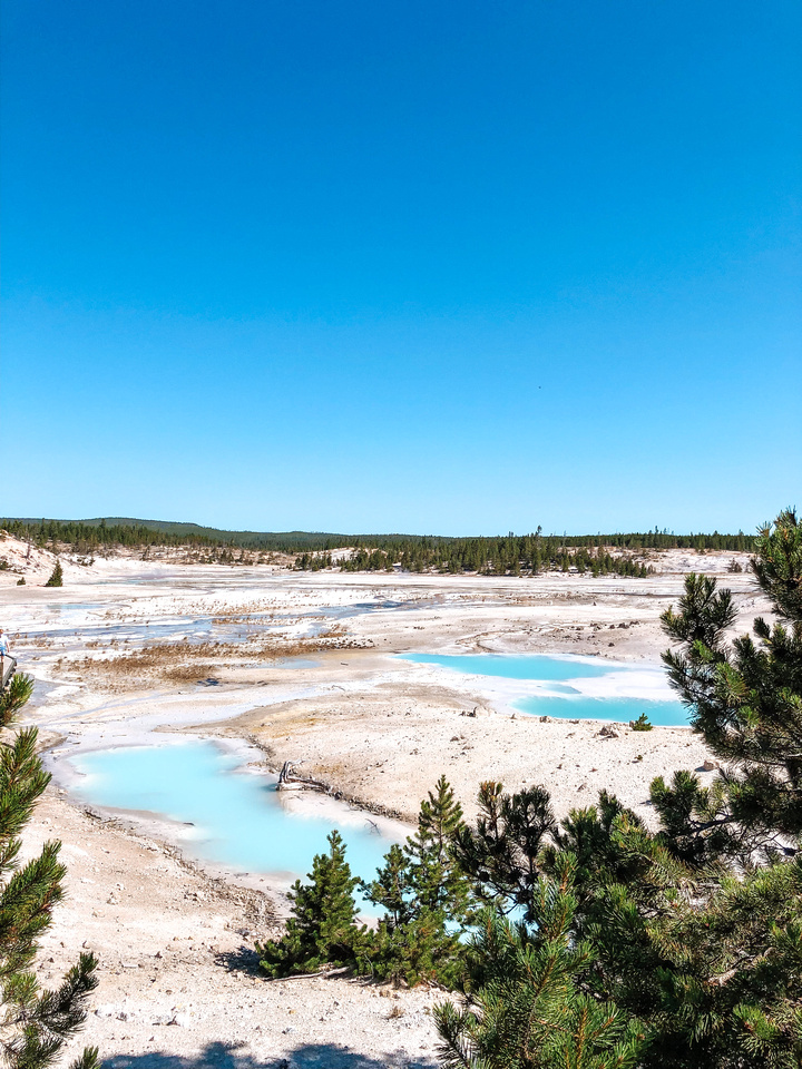Yellowstone Hot Springs: Turquoise blue pools in Yellowstone's Norris Geyser Basin.