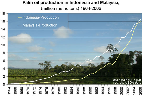 Palm oil production in Indonesia and Malaysia