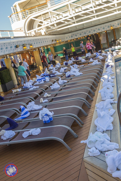 The Towel Menagerie Created by the Housekeeping Staff on Board the Westerdam (©simon@myeclecticimages.com)