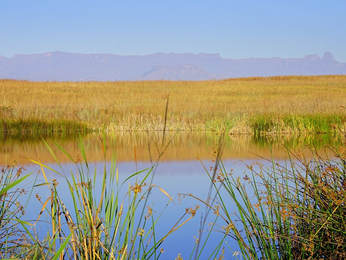 Reflections in Northern Drakensberg