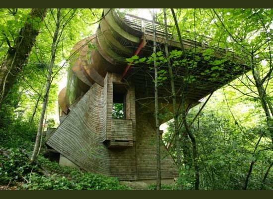 https://i2.wp.com/photos.pouryourheart.com/wp-content/uploads/2018/12/forest-houses07.jpg?w=640