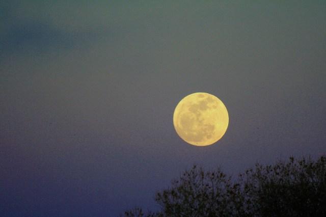 https://i2.wp.com/photos.pouryourheart.com/wp-content/uploads/2018/12/full-moon-rising4.jpg?w=640