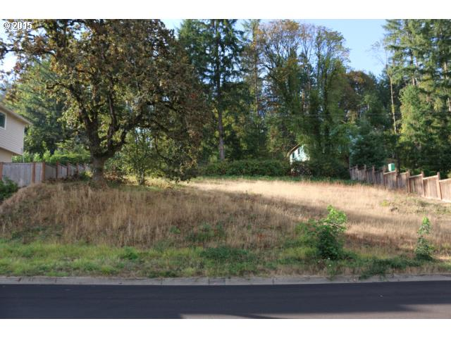Rare find, large .23 acre lot in Ambleside Meadows. Premier location in Springfield. Northern views of hills. Utilities in street. Choose your own builder. Seller has preliminary plans for lot.