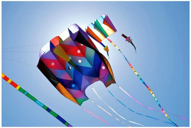 Kite Flying Festival In India Amazing Sites With Best Free Stock Photos