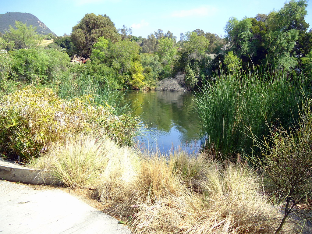 The Lagoon Used in Psycho, Seen on the Universal Studios Hollywood Backlot Studio Tour