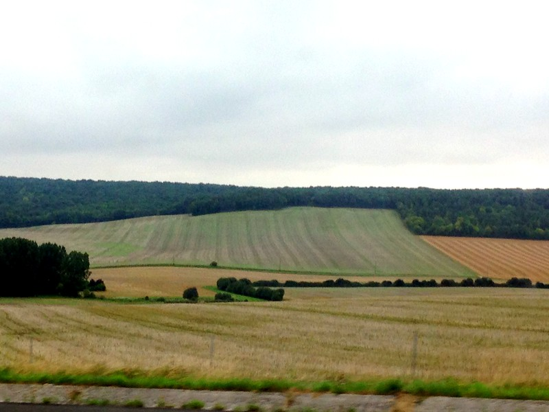 Passing Fields of Green on the Way to Chaumont, France