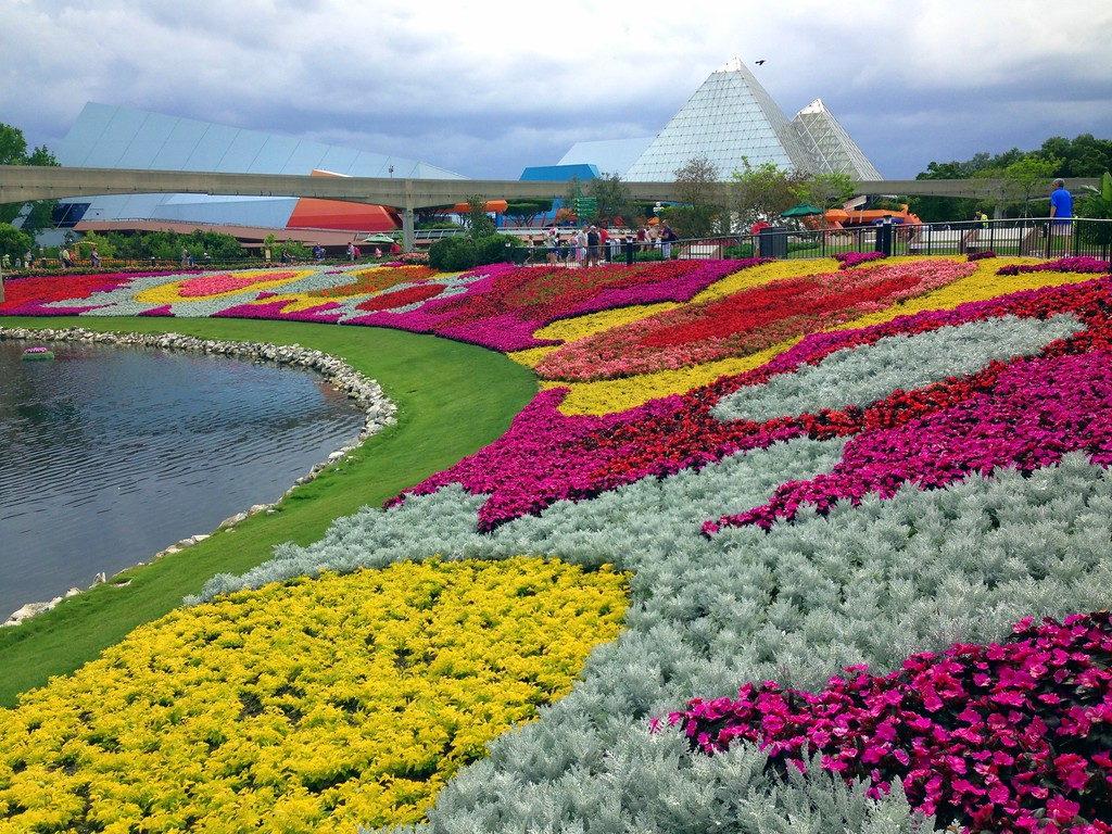 Colorful Flowers Create Stunning Shapes and Designs at the 2015 Epcot International Flower and Garden Festival