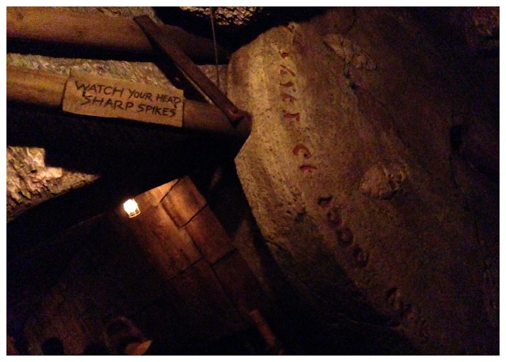 A Booby Trap in the Queue for Indiana Jones and the Temple of the Forbidden Eye, a Ride at Disneyland