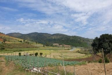 Kalaw – 6+ Mile Trekking