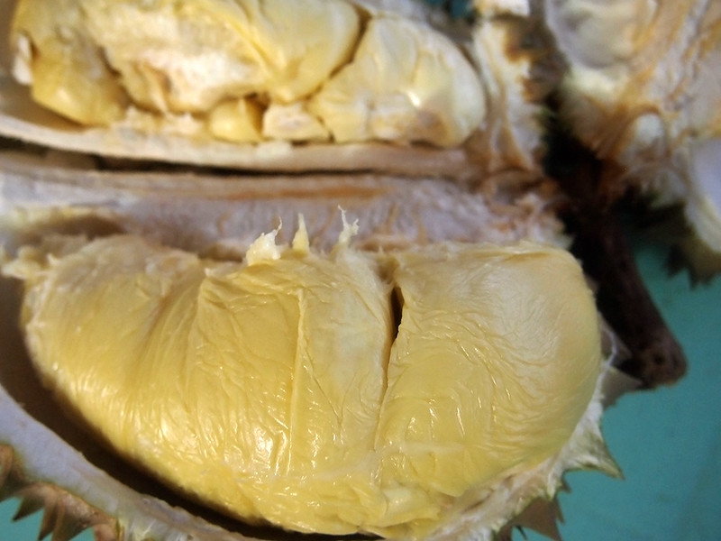 Umali Philippines Durian