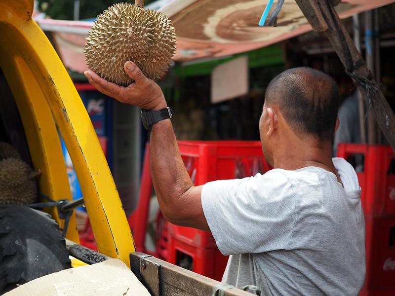 Magsaysay Durian