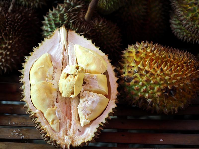 Philippine Durian