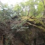 Pulpit Rock - Bedford NH 13