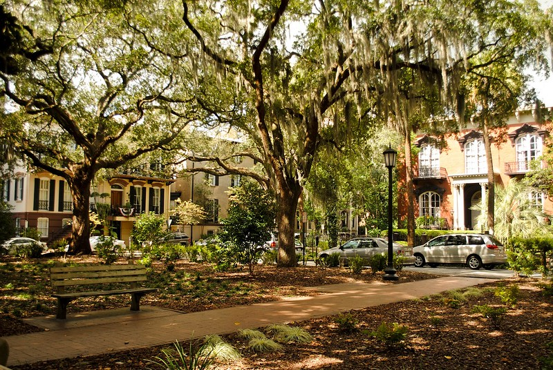 Savannah, Georgia by GA Followers