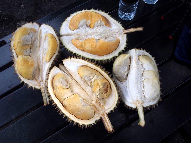 batu ferringhi durian