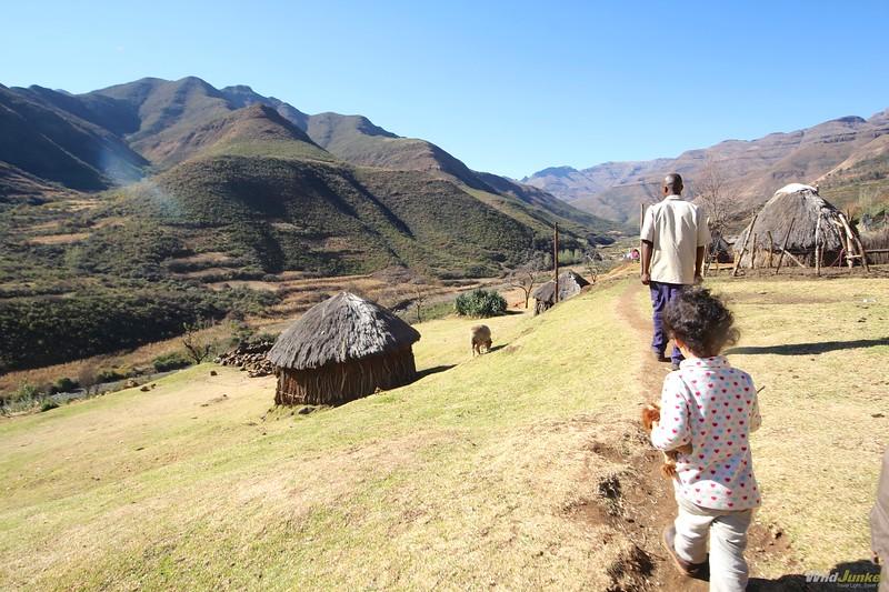 非洲非洲动物园和南非的孩子们在一起