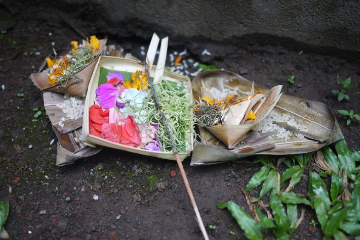 a collection of offerings left in Ubud, Bali