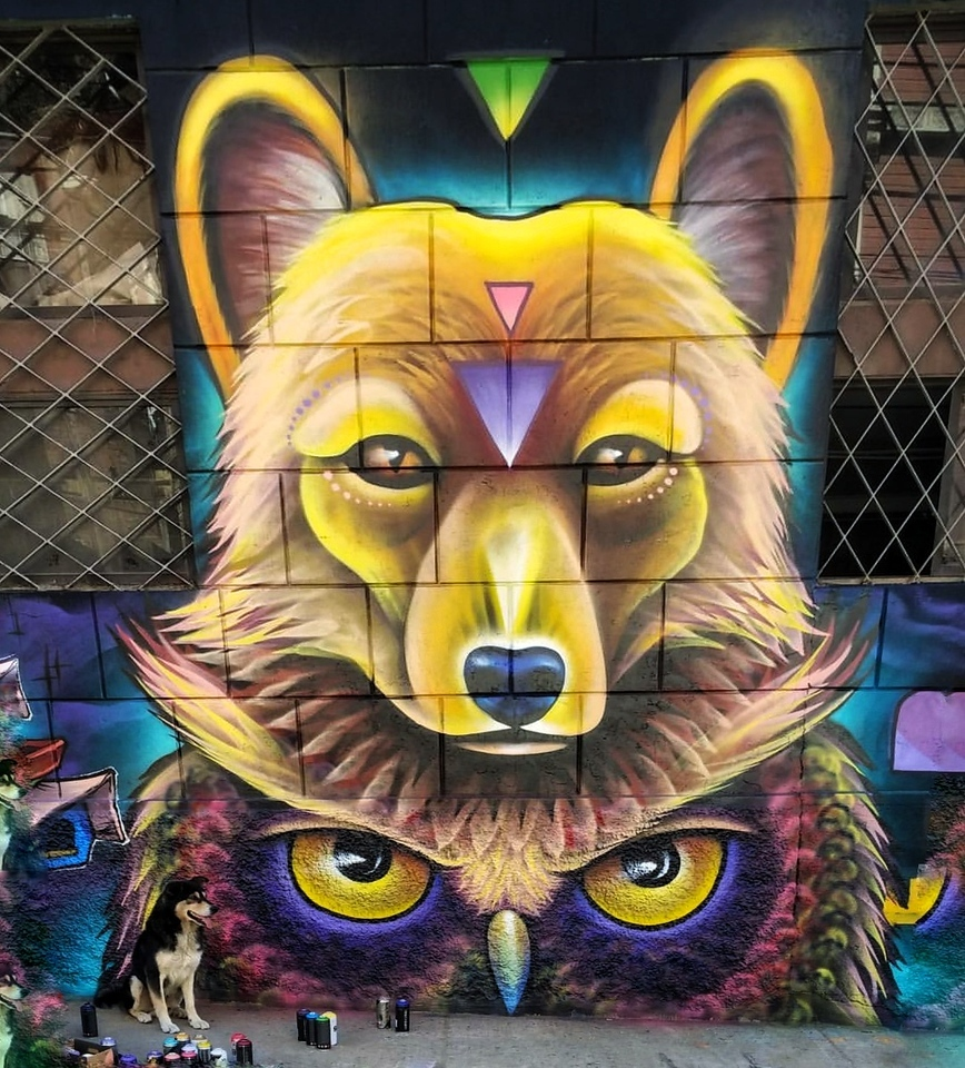 Wolf and Owl - Interview with Silly Sully - StreetArtChat.com