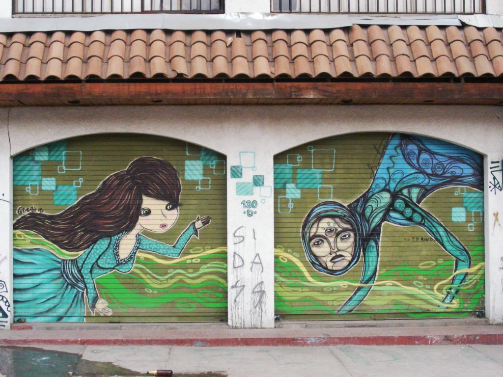 beautiful street art on roller doors of shops