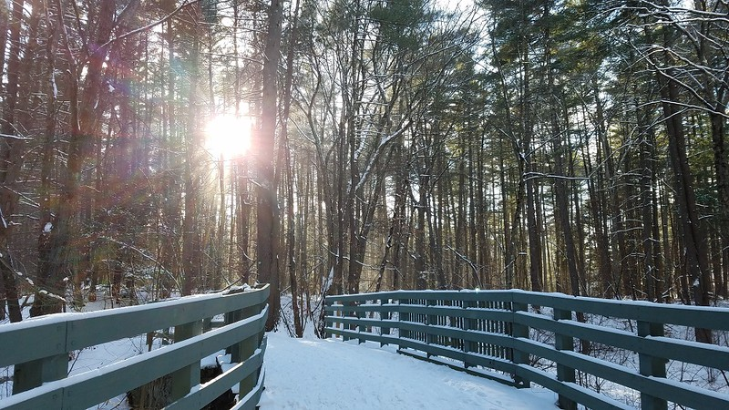 Why Mine Falls Park is Perfect Year Round