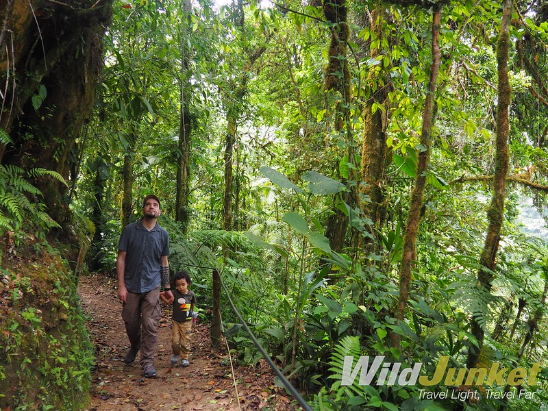 one week costa rica itinerary - sky walk in monteverde