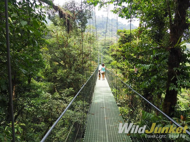 one week costa rica itinerary - hanging bridges in monteverde