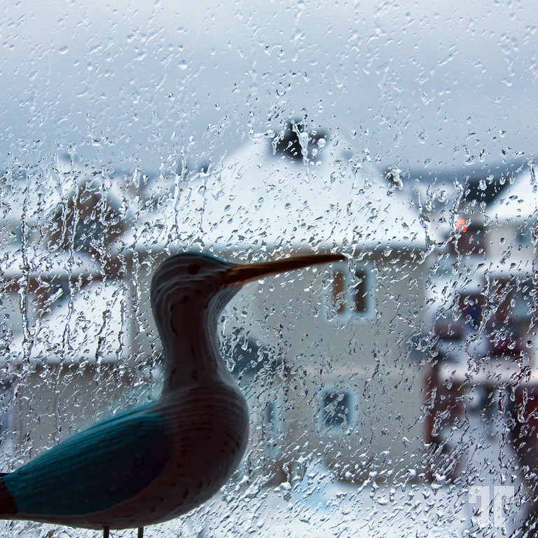 Window with a view of the winter