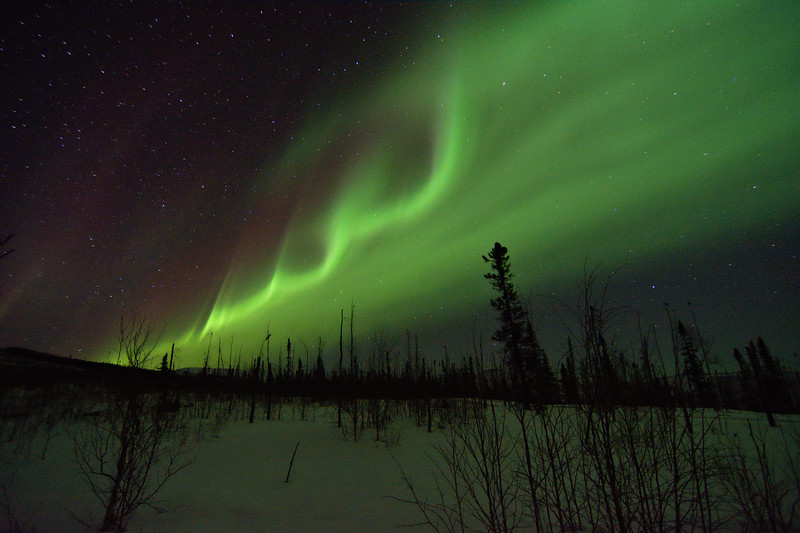 Waves of green aurora begin to form in a band as activity begins to pick up
