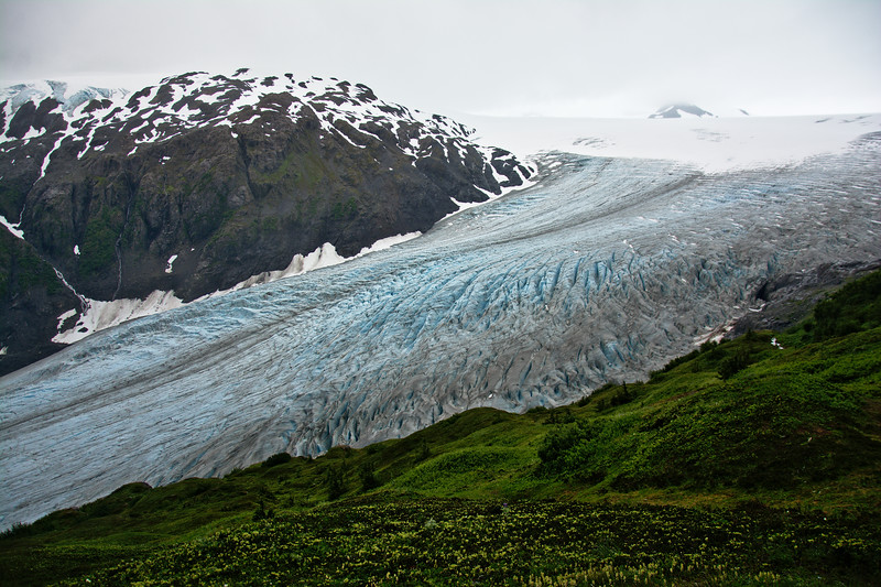 Looking over Exit Glacier and into the Harding Icefield from the Harding Icefield Trail