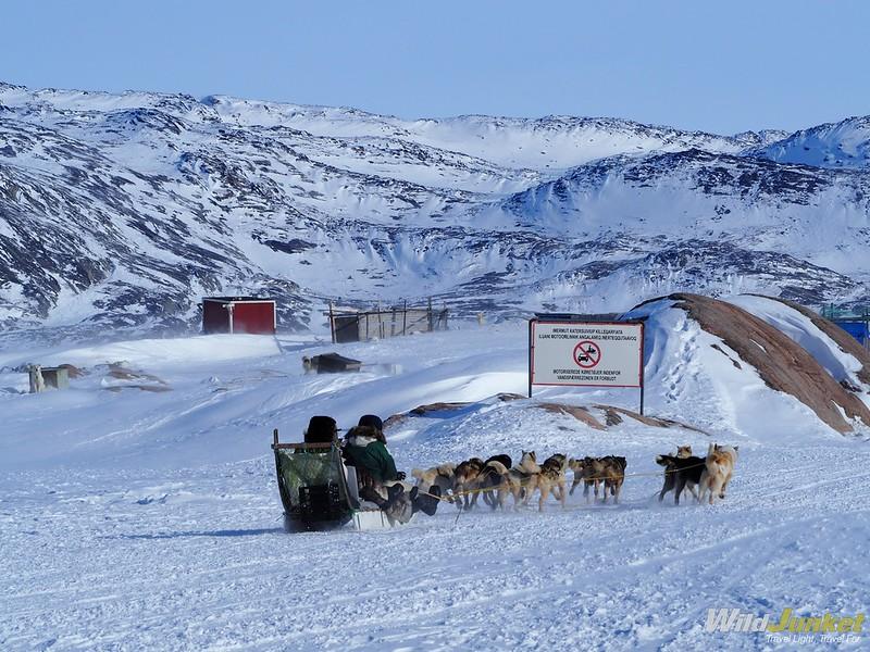 在动物的冰里,在—————————冰锥