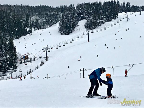滑雪滑雪:雪豹公园公园的雪白