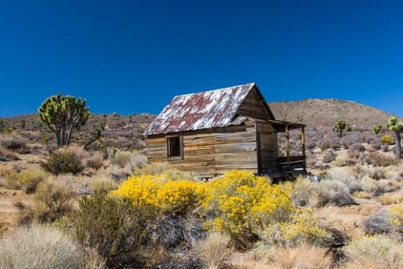 Coles Flat Cabin