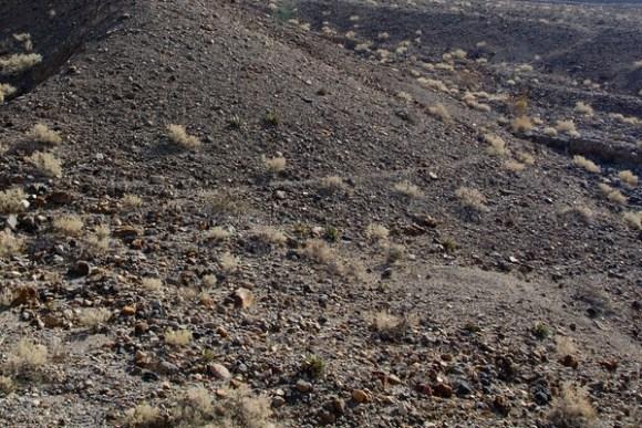 """Death Valley Sleeping Circles"""