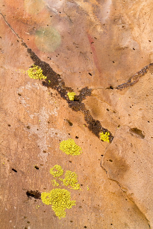 Woods Wash Petroglyphs