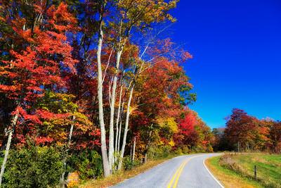 Nettie Mountain Road
